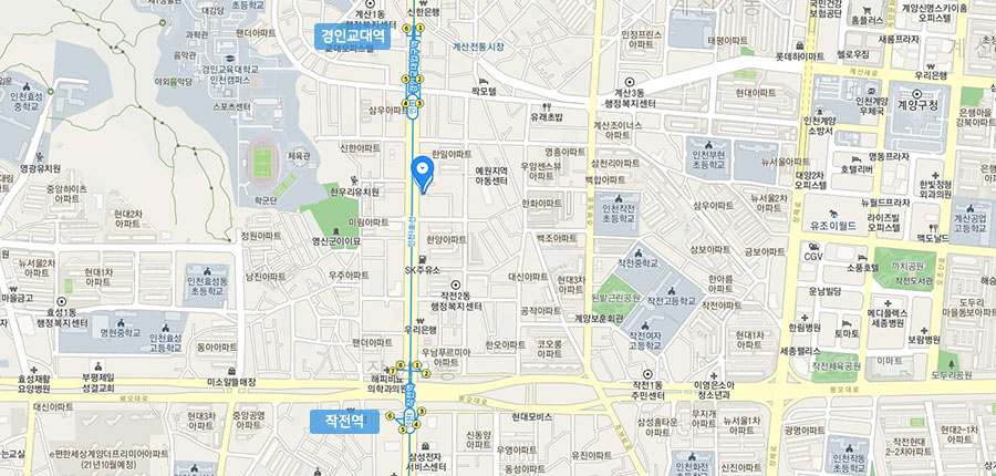 지도 이미지